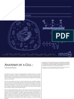 Cells - Molecules and Mechanisms