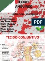 Sangue Ana Paula