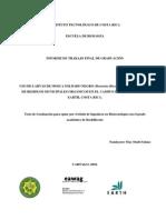 Uso Hermetia Para Manejo de Residuos Organicos en u de Costa Rica
