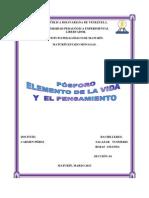 Informe Del Ciclo Del Fosforo