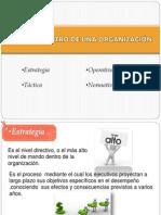 Niveles Dentro Una Organizacion