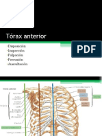 Palpación del tórax anterior