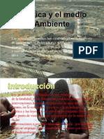 Medio Ambiente (1)