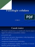 curs3  fiziologie