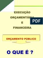 ORÇAMENTO GDF