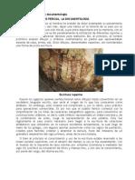 080103. Sobre El Origen de La Documentología