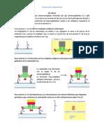 Complemento Via Clasica.docx