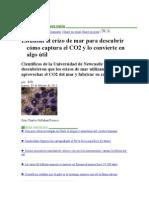 ERIZO Y CO2
