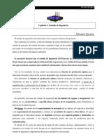 Capitulo 2 - Ingeniería de Proyectos