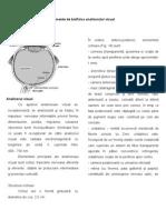 Curs 8 - Elemente de Optica Biologica