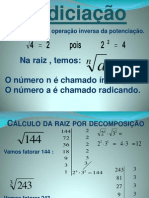 radiciao-120218124120-phpapp01