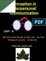 Perception Class Ppt01