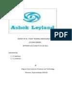 46123030-Ipt-Report