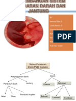 49848491 Perkembangan Sistem Peredaran Darah Dan Jantung