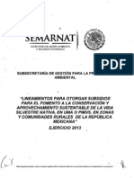 Lineamientos UMAS o PIMVS 2013