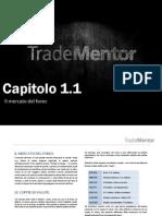 1-1 Il Mercato Del Forex