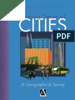 Making Sense of Cities