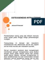 Osteogenesis Intrauterine Ppt