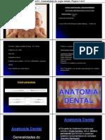 Anatomia Dental e Escultura