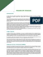 tec_fresa.pdf