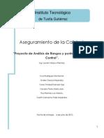 Proyecto de Analisis de Riegos y Puntos Criticos de Control
