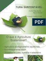 AGRICULTURA SUSTENTÁVEL.pptx