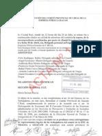 Actas Del Comité Provincial de Ciudad Real Geacam