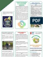 Tríptico de derecho y educacion ambiental