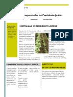 presidente juarez