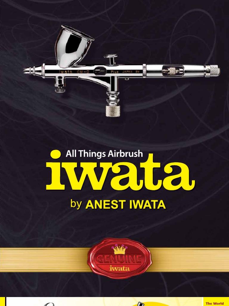 Iwata 10/' Braided Hose  BT010