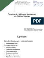 BQ005-LipideosMembranas