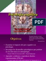05-psicologia-cognitiva.ppt