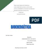 BIOENERGETIC TRABAJO FINAL.docx