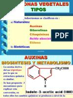 Metabolismo Hormonal
