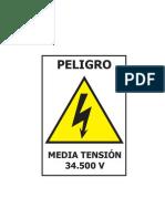 R_ELECTRICO.pdf