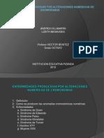 ENFERMEDADES PRODUCIDAS POR ALTERACIONES NUMERICAS DE CROMOSOMAS.pptx