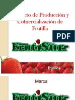 Proyecto de Producción y Comercialización de Frutilla