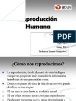 Ciencias Naturales Reproduccion Humana