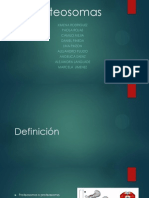 Club de Revista Definitiva