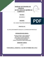 PRACTICA 10 BIOQUIMICA.docx