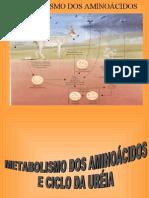 metab-proteinas 2012.1