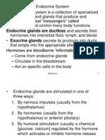 endocrine handouts.ppt