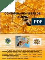 Contaminarea mierii de albine