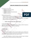 curso_cata.pdf