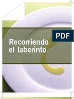 oliva radiografia del proceso 2012.pdf