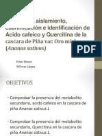 Extracción, aislamiento e identificación de Acido cafeico