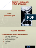 radiologi traktus urinarius