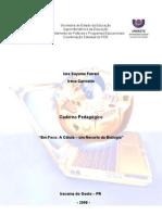 Biologia - 1º Ano - Química da célula - com experimentações e jogos.pdf