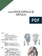 Inervatia Cap Gat