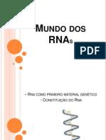 Mundo Do RNAs